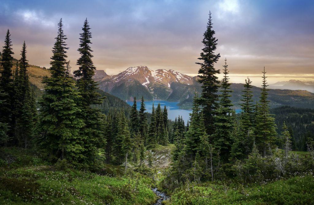 Glacial Mountain