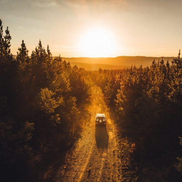 Wilderness Sunset
