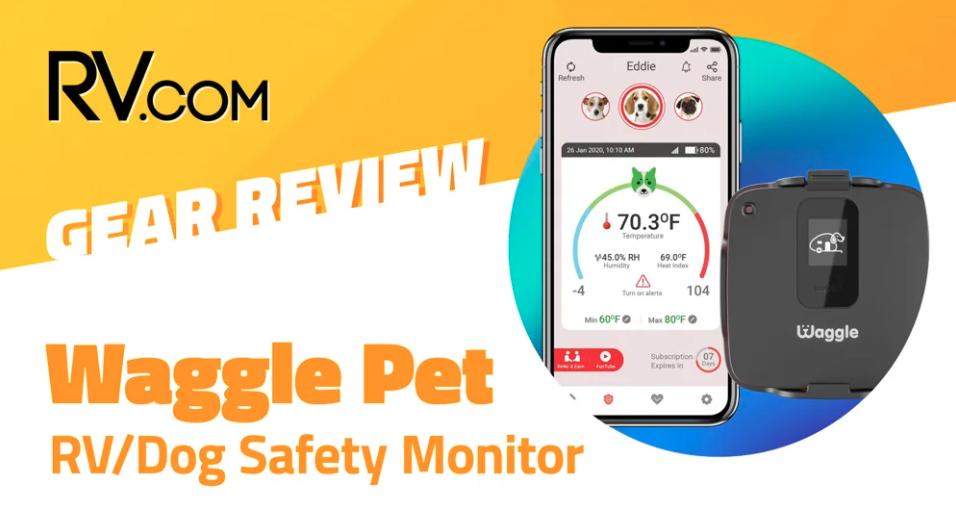 Waggle Dog Temperature Monitor