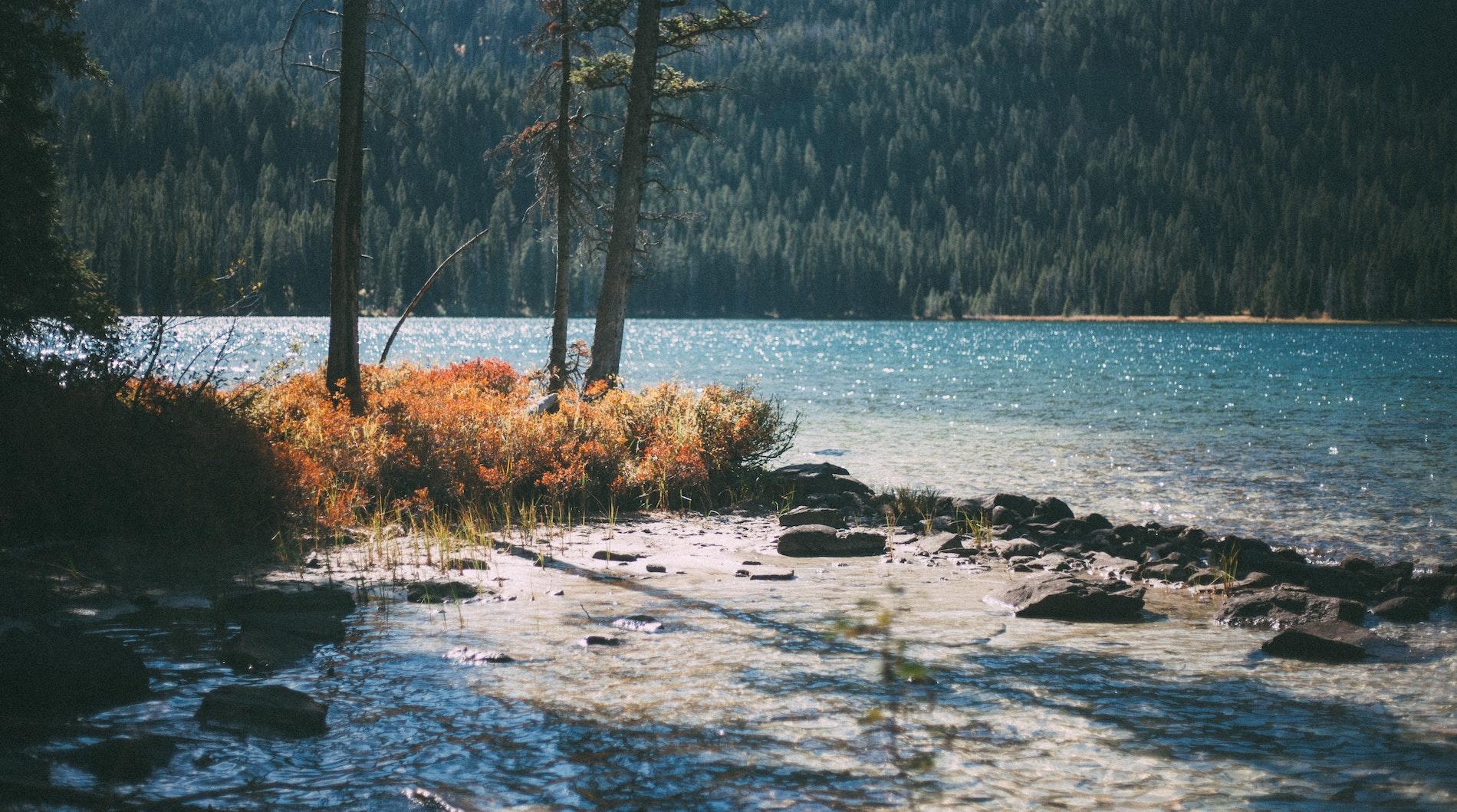 teton national forest, united states