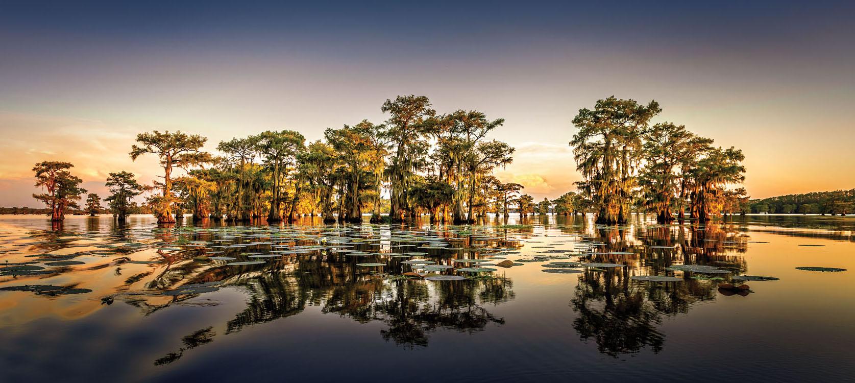 Caddo Lake State Park, Texas