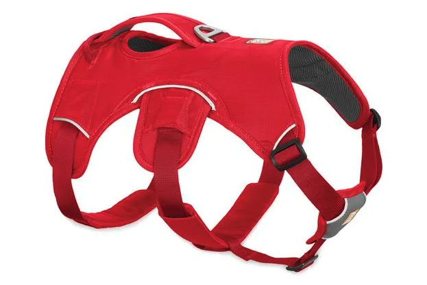 WEB MASTER™ DOG HARNESS WITH HANDLE