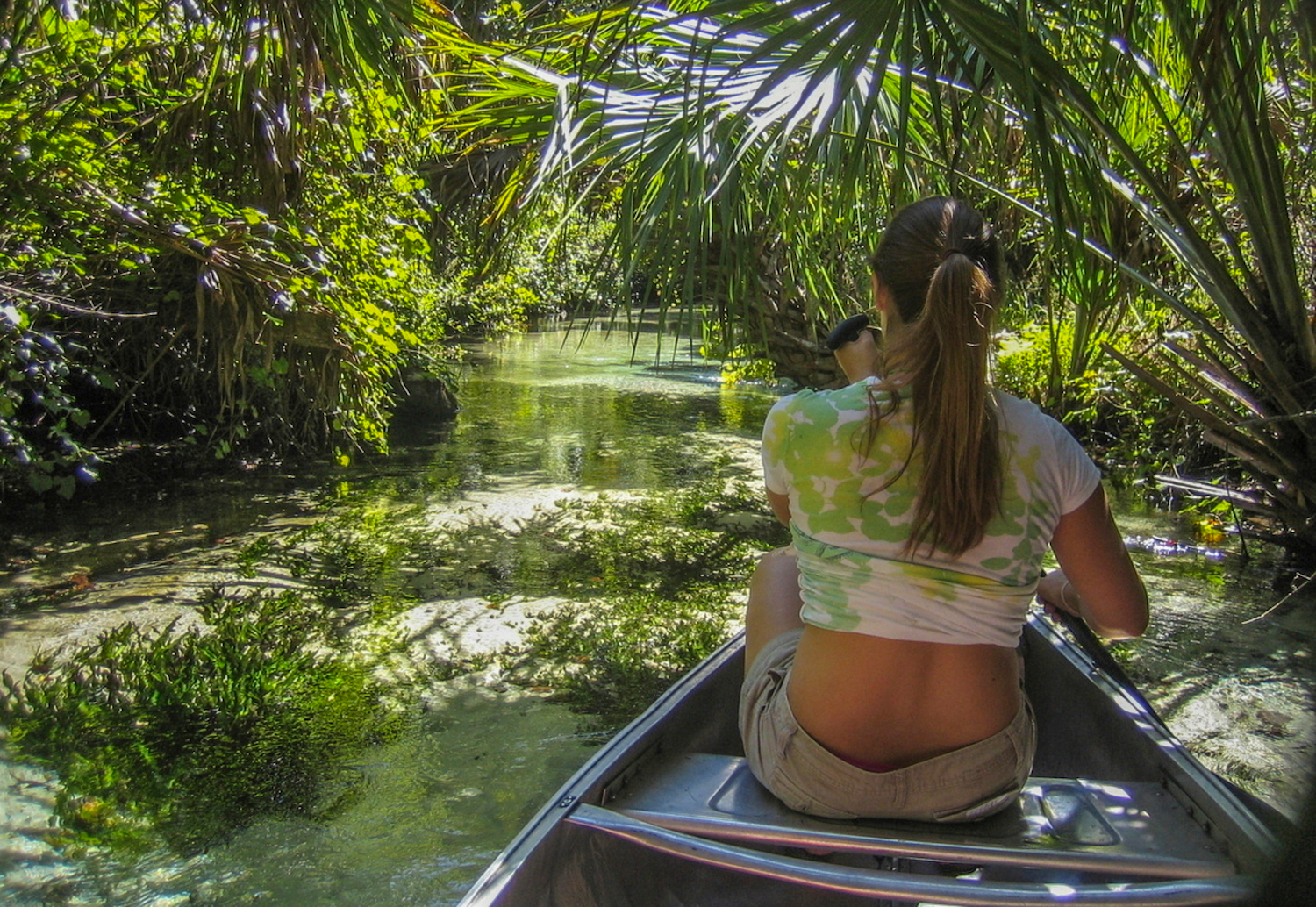 Woman Canoeing Down Juniper Run In The Ocala National Forest, FL - Tropical and lush looking jungle canopy with crystal clear water