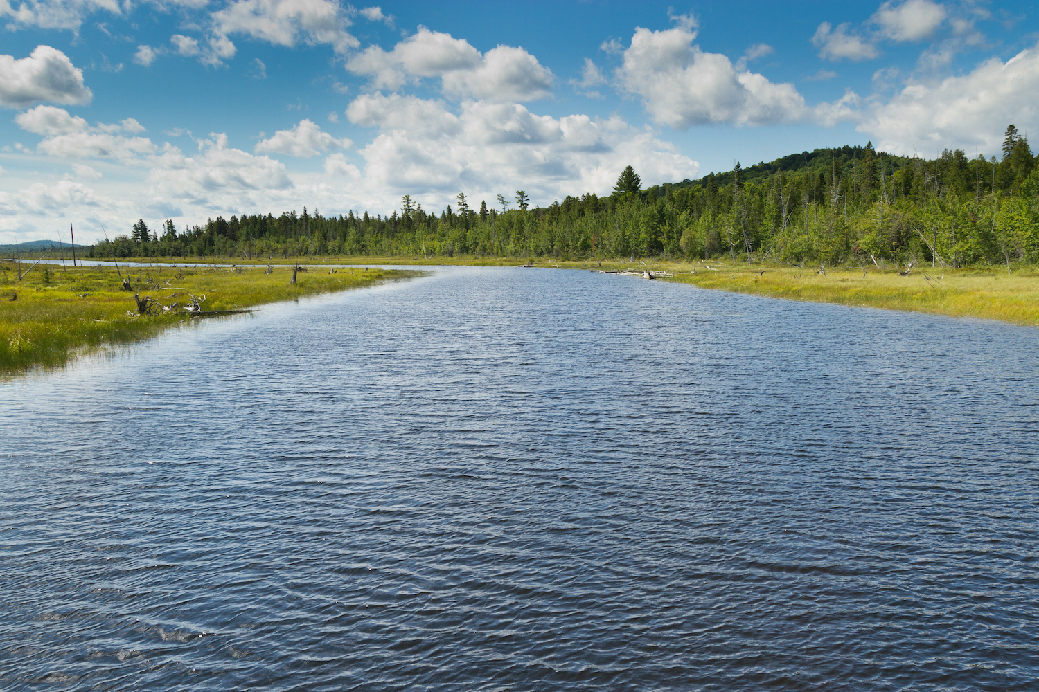 View of one of the rivers in Allagash Wilderness Waterway area in the North woods in Maine